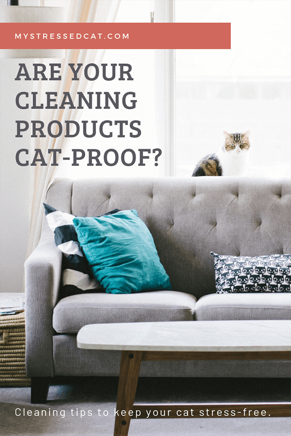 Are Your Cleaning Products Cat Proof?