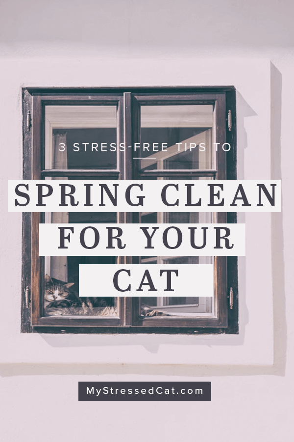 3 stress free spring cleaning tips for you and your cat