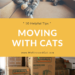 10 Helpful Tips For Moving With Cats