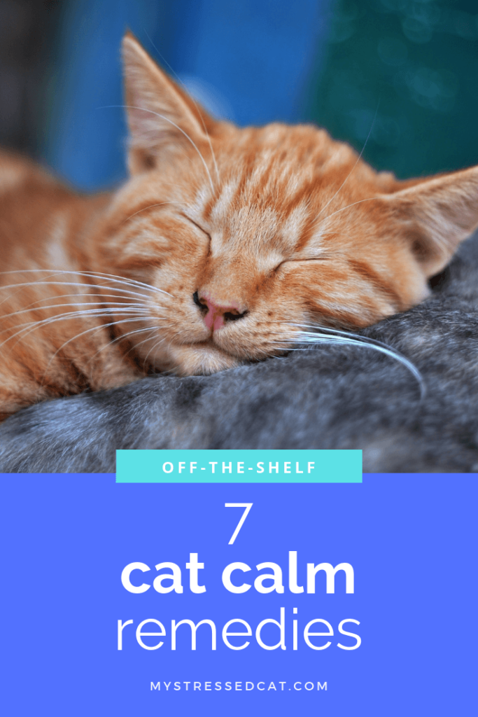 7 off-the-shelf remedies to keep your cat calm