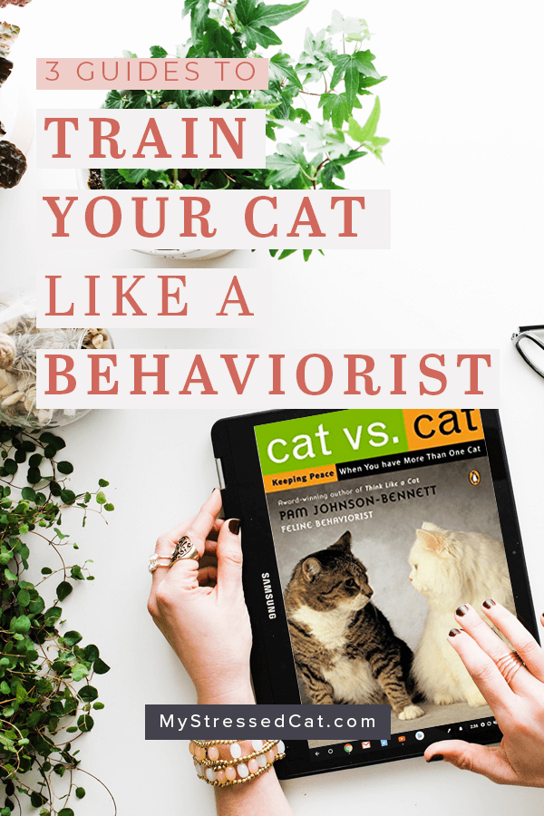 3 Guides to train your cat like a cat behaviorist - Cat vs. Cat is one of my favorite guides for multi-cat training. #MyStressedCat