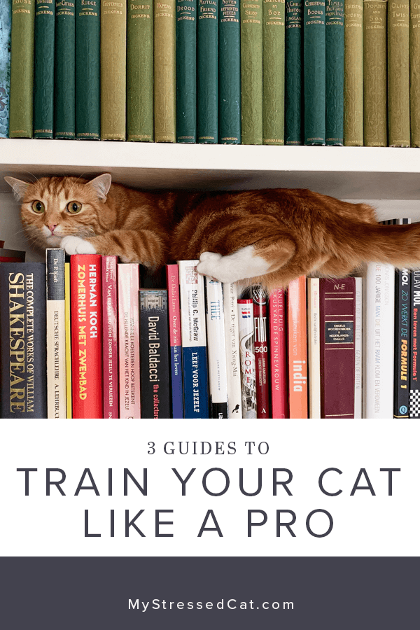Don't you wish your cat came with a manual? Check out these 3 Guides and learn how to train your cat like a cat behaviorist. #MyStressedCat